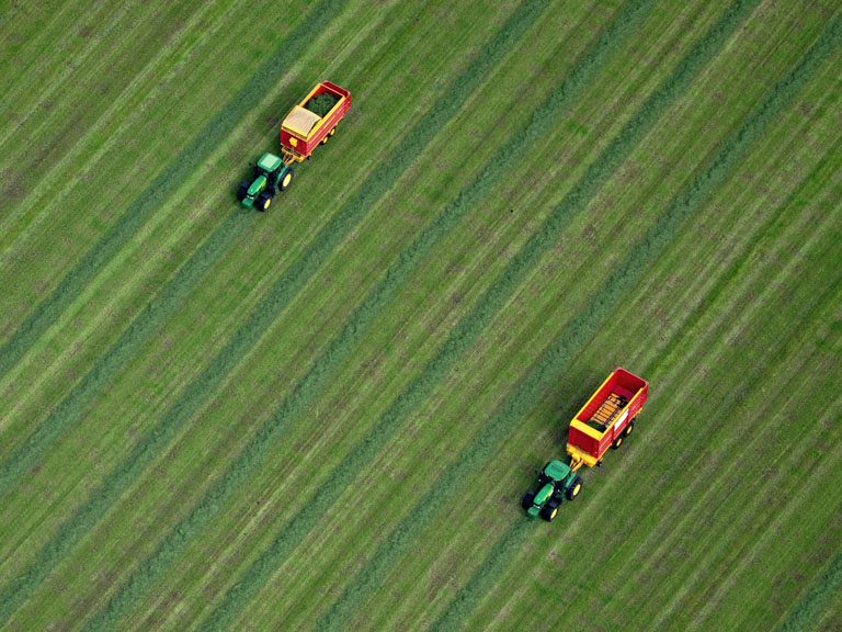 Tractors plough a green field